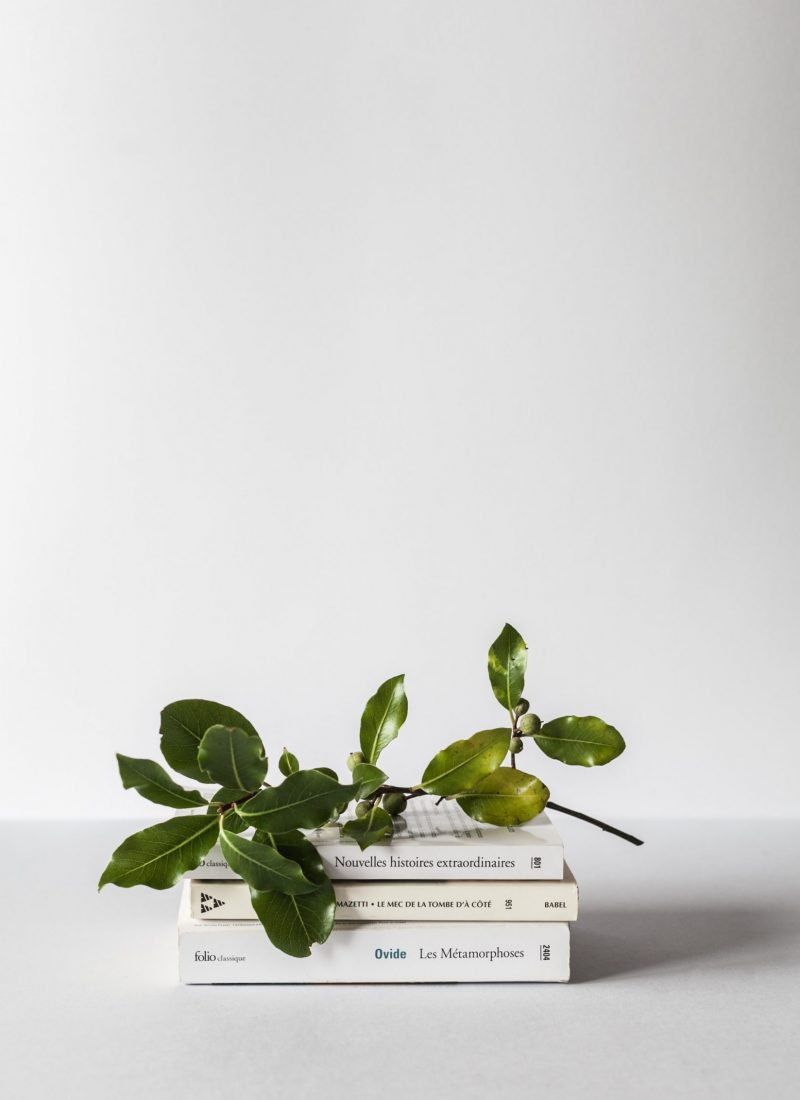 Book staple with green leaves on top